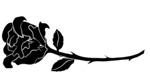 Veterans.horizontal rose
